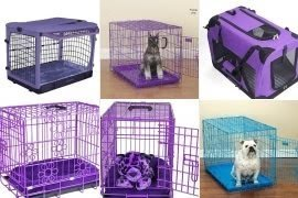 Purple dog crate