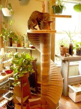Cardboard Cat Furniture - House, Tower, Castle - Foter