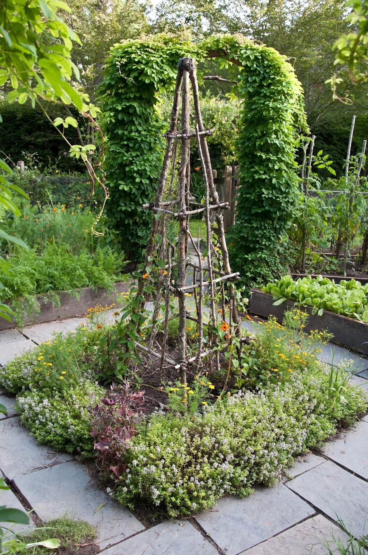 Beau Garden Obelisk Trellis 1