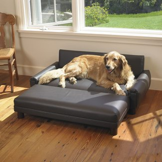 Leather Dog Bed - Ideas on Foter
