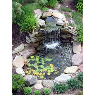 Water fountain landscaping ideas