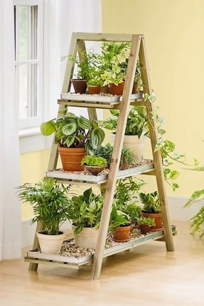 Indoor Wooden Plant Stands Ideas On Foter
