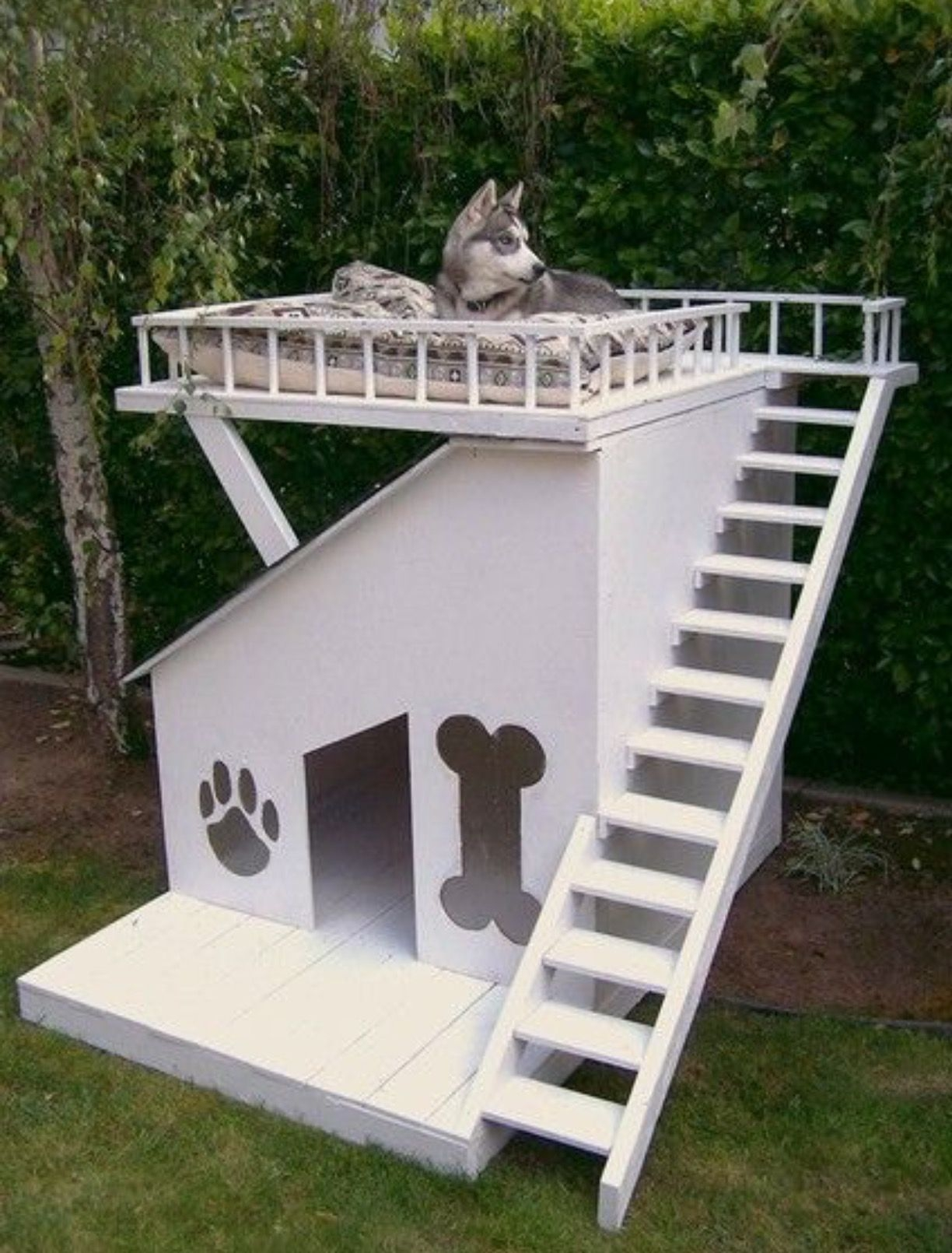 Dog House Furniture Ideas On Foter