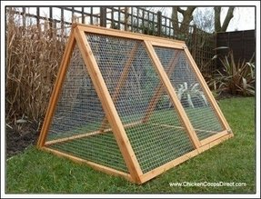 Chicken coops and runs for sale 1