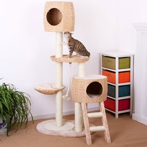 Eco friendly cat tree