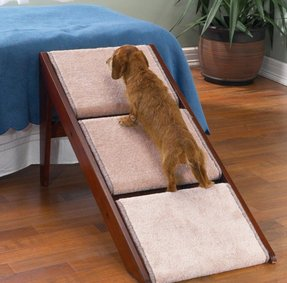 Pet ramp for bed