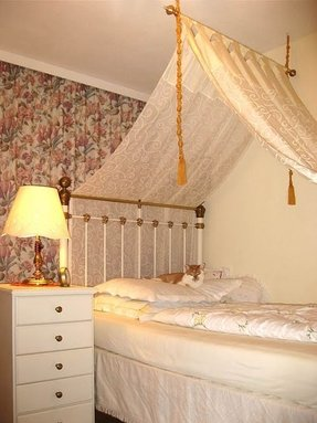 Toddler Canopy Beds Foter