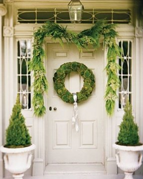 Topiaries for front porch 11