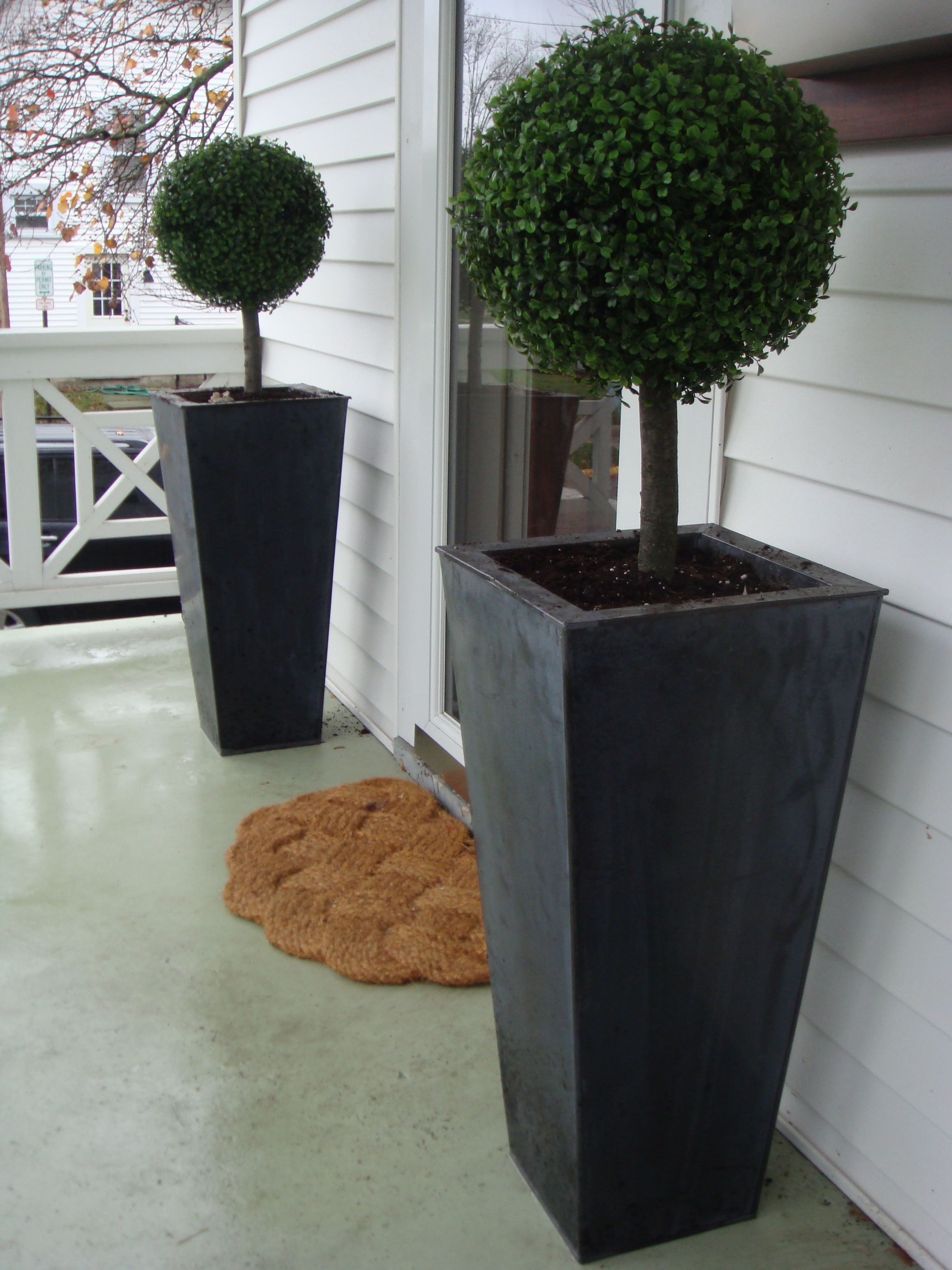 Genial Topiaries For Front Porch 2