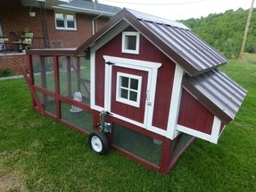 Buy chicken tractor 1