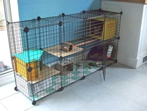Cat cages enclosures 2