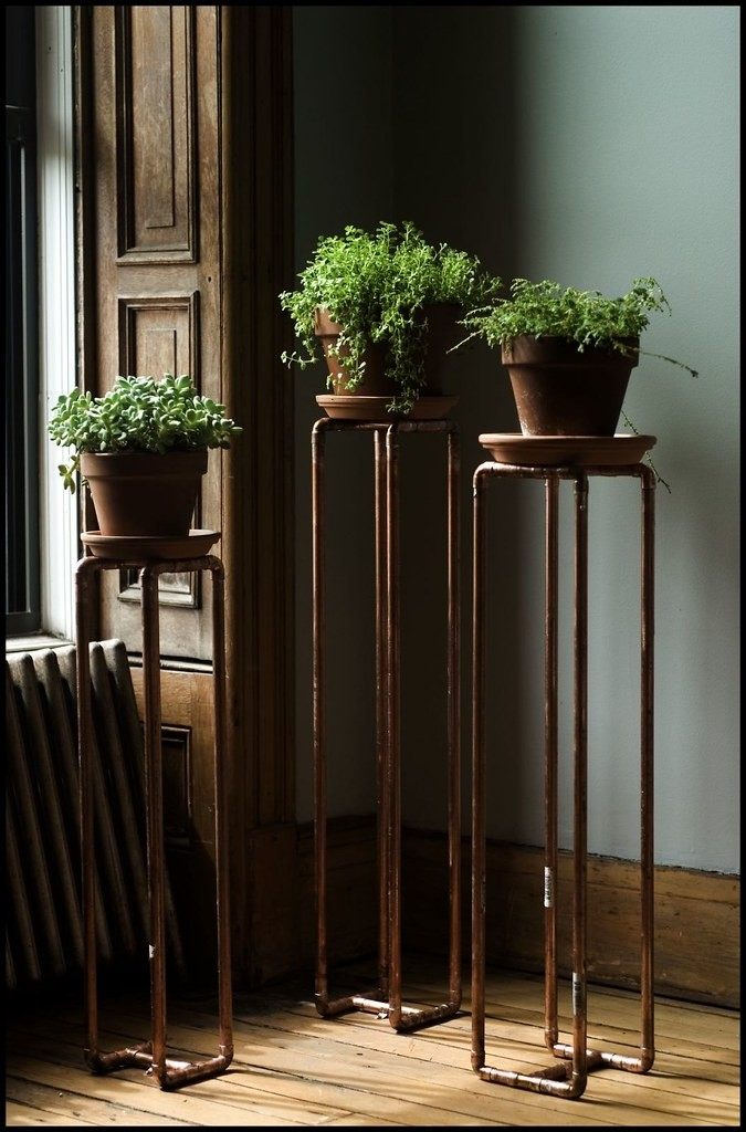 Incroyable Tall Pedestal Plant Stand   Ideas On Foter