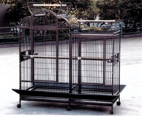 Bird cages with dividers