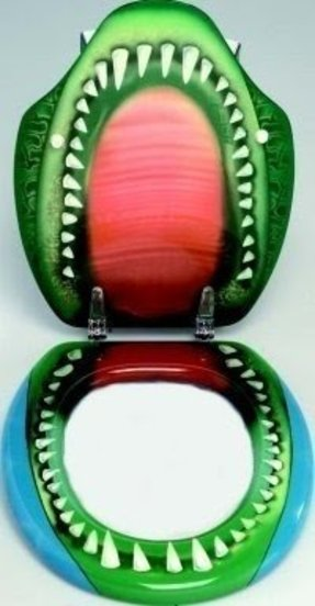 Novelty Toilet Seat Foter