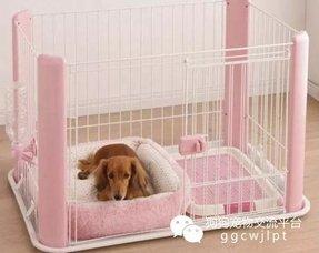 Pink Dog House Foter