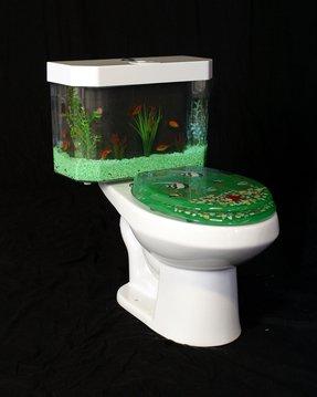 Incredible Aquarium Toilet Seat Ideas On Foter Squirreltailoven Fun Painted Chair Ideas Images Squirreltailovenorg