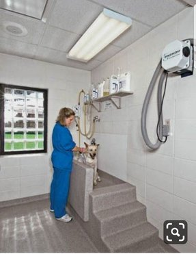 Veterinary Clinic Design Build Michigan