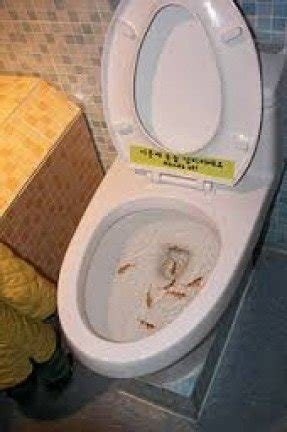 Yellow Bathroom Accessories