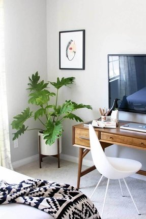 Corner Plant Stand Indoor - Foter