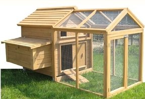 Chicken coop with run 25