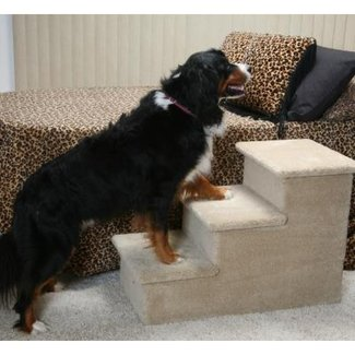 Dog steps for large dogs