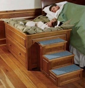 Dog Stairs For High Bed Foter