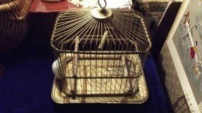 Hendryx Bird Cage Ideas On Foter