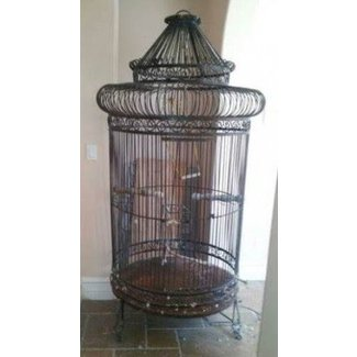 Bird cage extra large exceptional over 5 tall wood branch