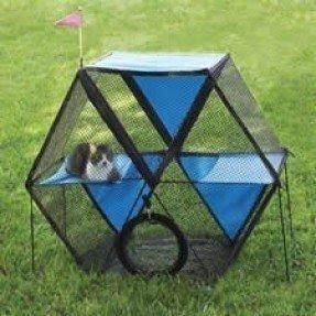 Outdoor cat playpen 1 & Outdoor Cat Playpen - Foter