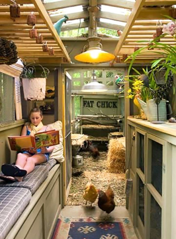 Chicken Coop Plans For 6 8 Chickens 1