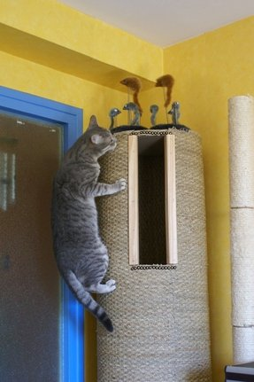 Sisal cat tree
