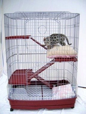 Indoor Cat Cages Foter