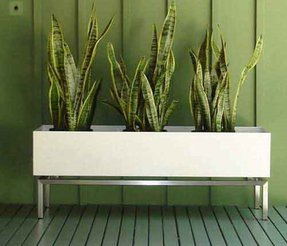 Mirrored Plant Pot Mirrored Planter Mirrored Planter Mirrored Indoor ...