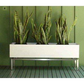 Wall Herb Garden Indoor Diy