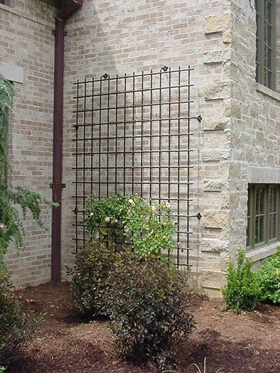 Large Iron Garden Trellis Pictures