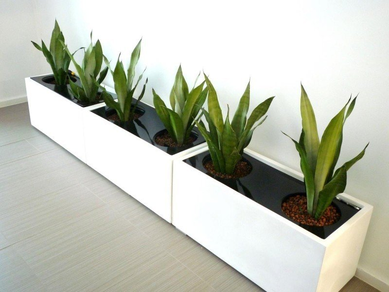 Premium fiberglass planter box white