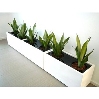 Indoor Planter Boxes Ideas On Foter