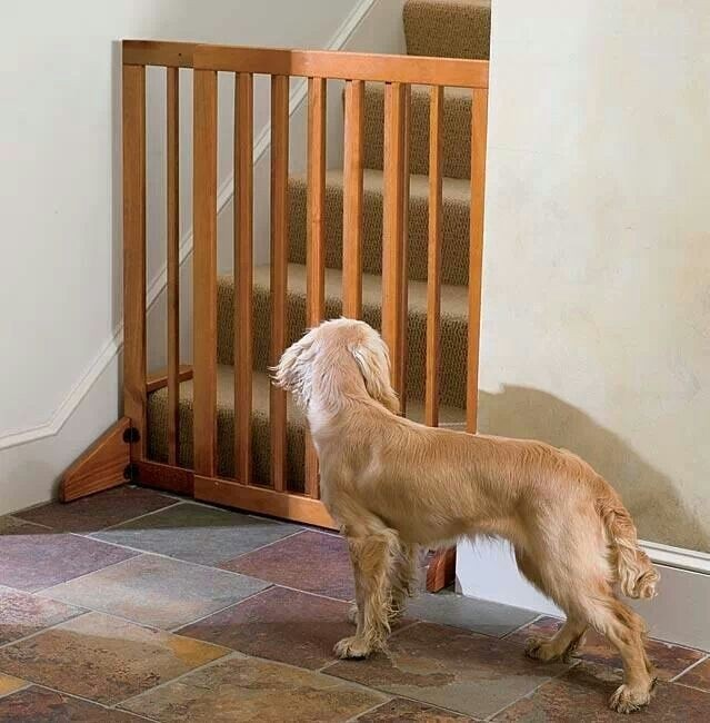 If You Canu0027t Teach Your Dog To Stay Away From The Upper Floors, Take A Look  At This Stair Gate For Dogs, Made Out Of Oak Wood With A Lock, ...