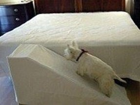 Pet ramp for bed 1