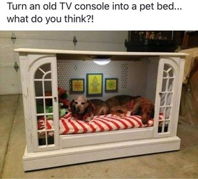 Dog four poster bed