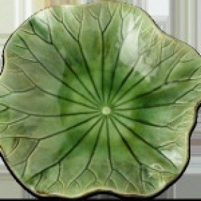 Green lily pad plate 1