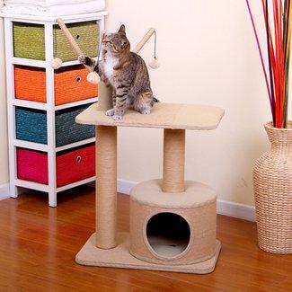 Best Whisker City Cat Tree For Sale Ideas On Foter