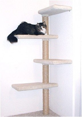 Sisal Cat Tree Ideas On Foter