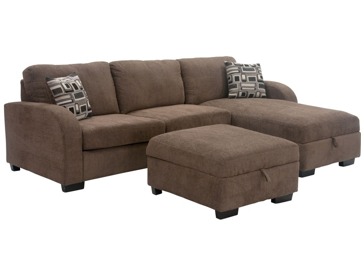 This One Its A Sleeper Sofa And Has Storage In