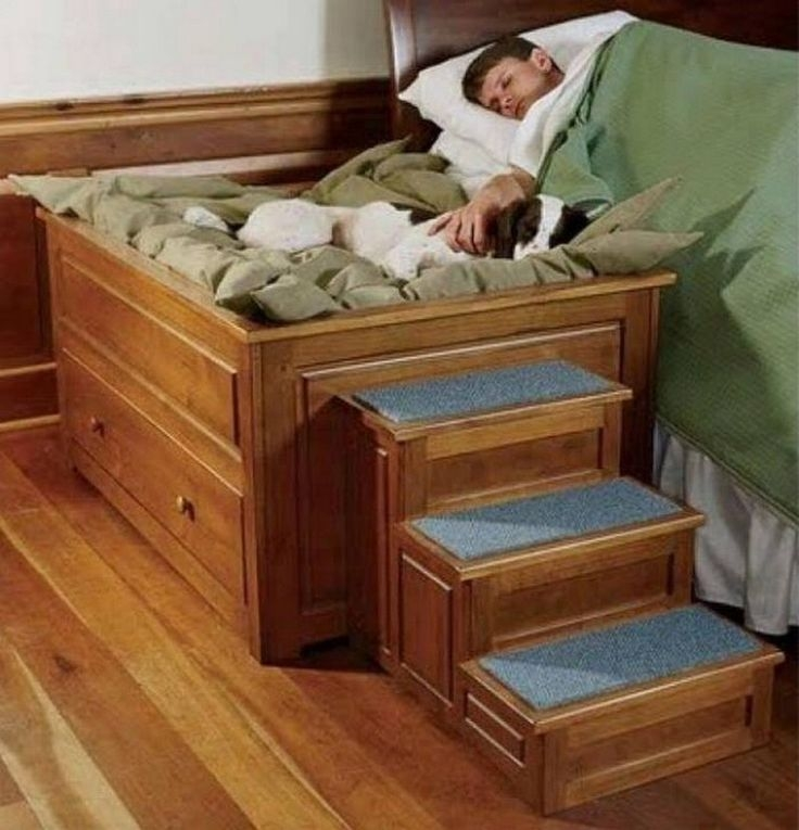 Dog Beds That Look Like Real Beds 1