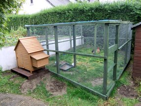 Chicken coops and runs for sale 2
