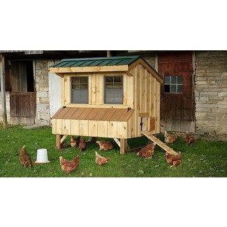 Extra large chicken coop with run