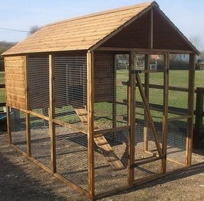 Large chicken coops for sale 1