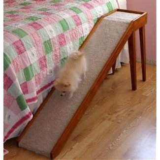 Dog Ramps For Tall Beds - Ideas on Foter