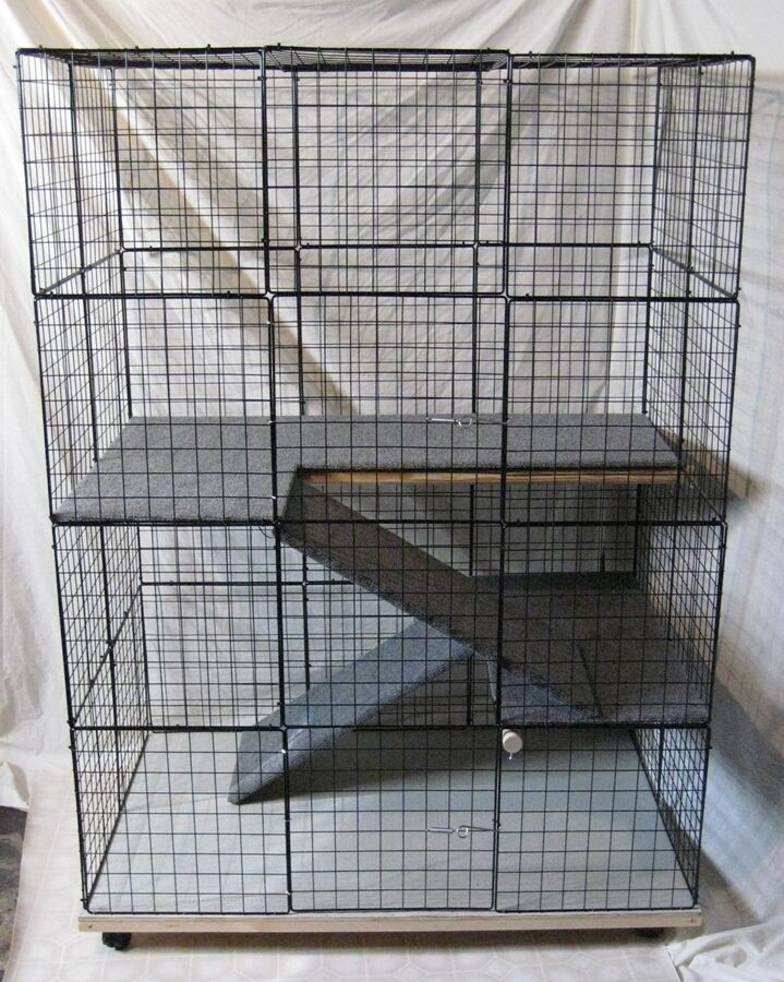 Indoor Cat Cages Enclosures Ideas On Foter